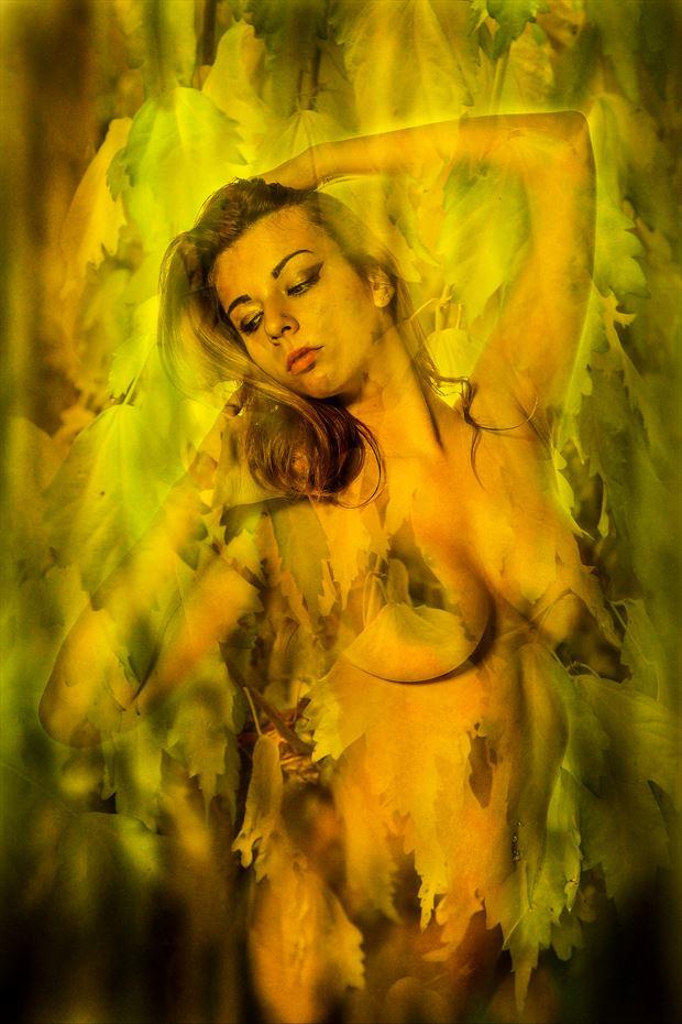 fall leaf collage artistic nude artwork print by photographer joe klune fine art