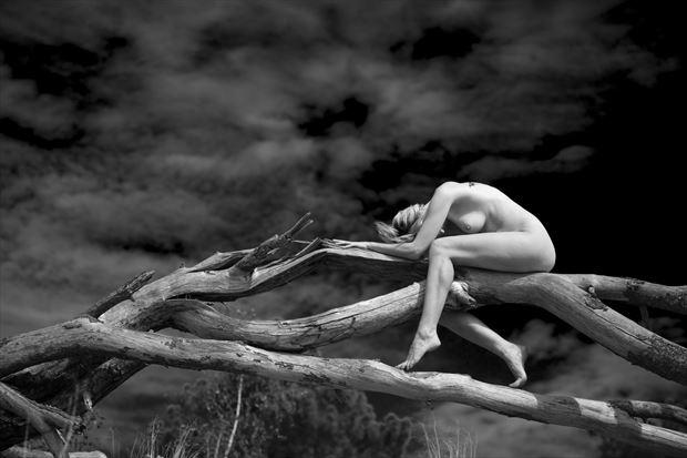fallen angel artistic nude photo print by photographer louis sauter