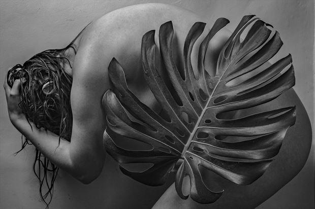 figure study artistic nude photo print by photographer gunnar