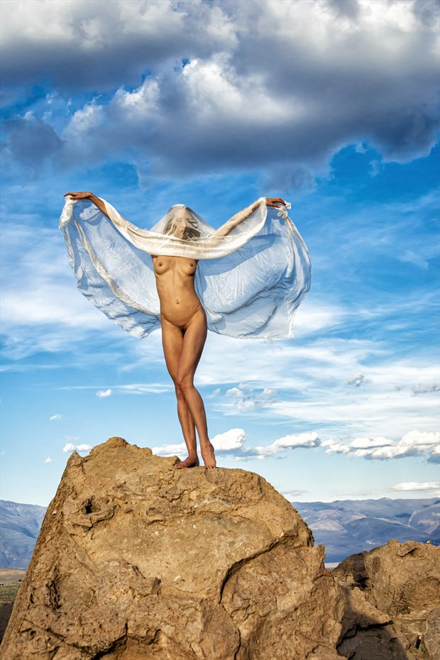 free as a bird artistic nude photo print by photographer philip turner