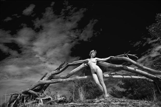gabriel artistic nude photo print by photographer louis sauter