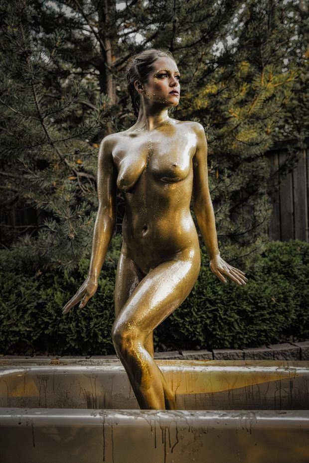 gold 5 artistic nude photo print by photographer ken greenhorn