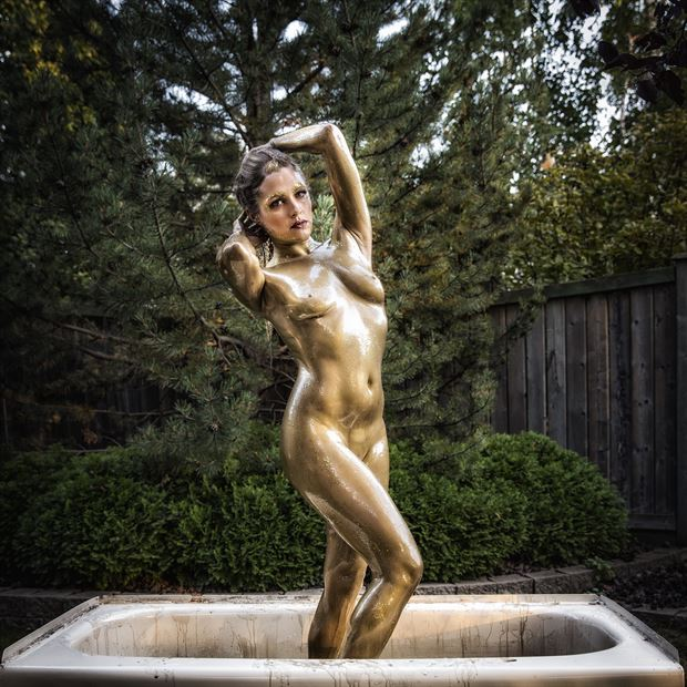 gold 6 artistic nude photo print by photographer ken greenhorn