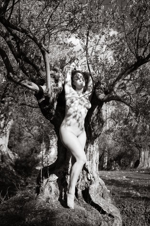 hamadryad artistic nude photo print by photographer garden of the muses