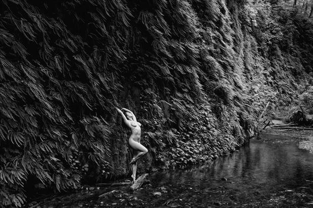 harmonious elements artistic nude photo print by photographer philip turner