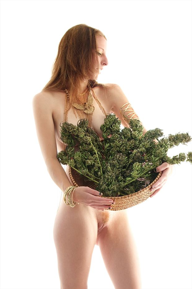 harvest queen artistic nude photo print by photographer aephotography