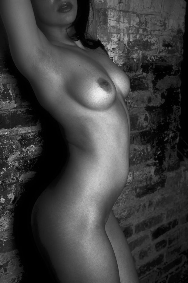 her silver body artistic nude photo print by photographer csdewittphotography
