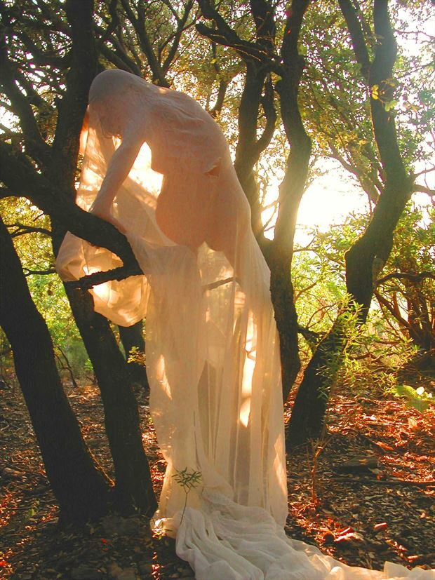 in the sun artistic nude photo print by photographer joseph auquier