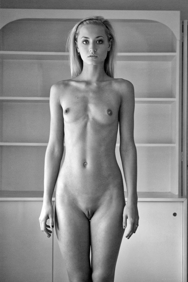 jaqueline by windowlight artistic nude photo print by photographer the hungry eye