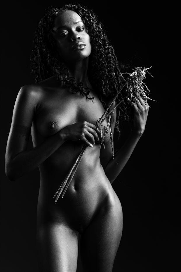 kayla artistic nude photo print by photographer depa kote