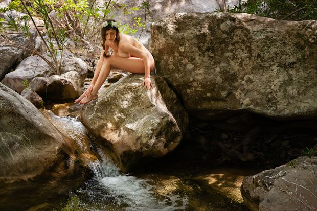 la na%C3%AFade artistic nude photo print by photographer garden of the muses