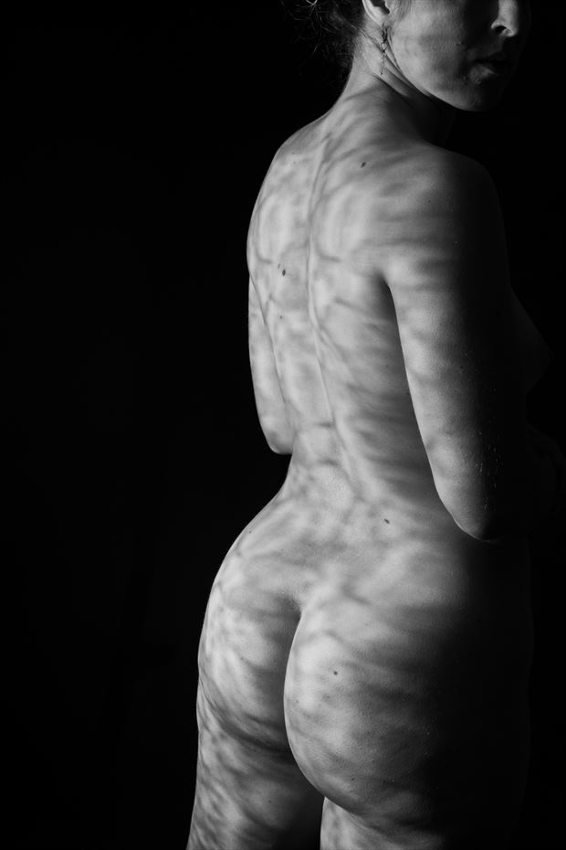 lace pattern artistic nude photo print by photographer gsphotoguy