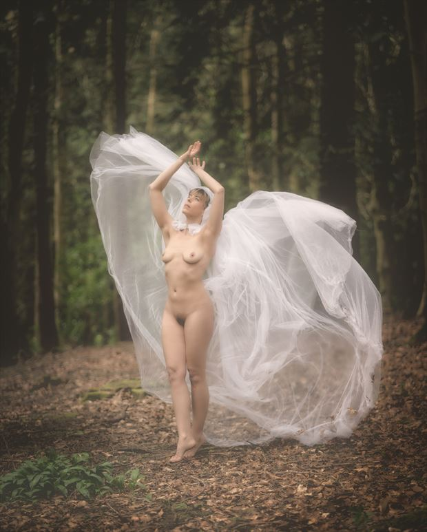 lady of the forest 1 artistic nude photo print by photographer colin dixon