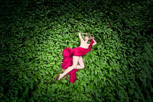 laid in the wild garlic artistic nude photo print by photographer colin dixon