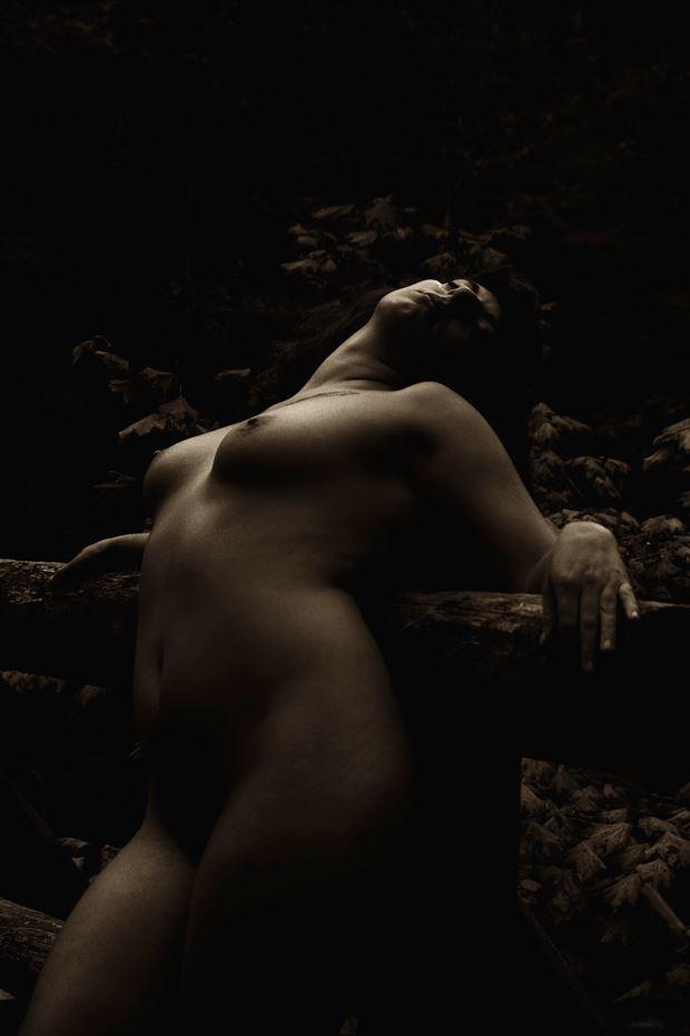 last light artistic nude photo print by photographer aephotography