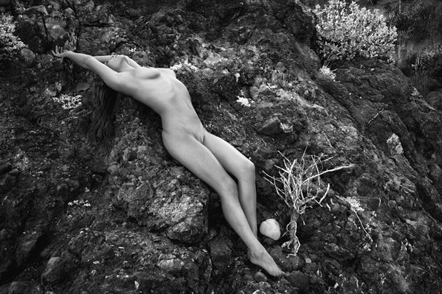 life sprang forth artistic nude photo print by photographer philip turner