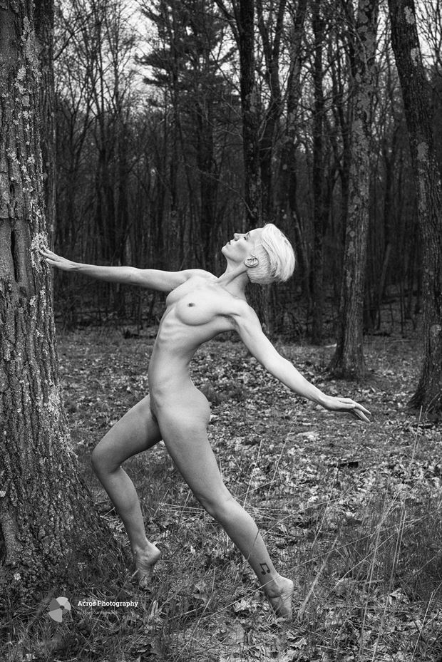 lilith artistic nude photo print by photographer acros photography