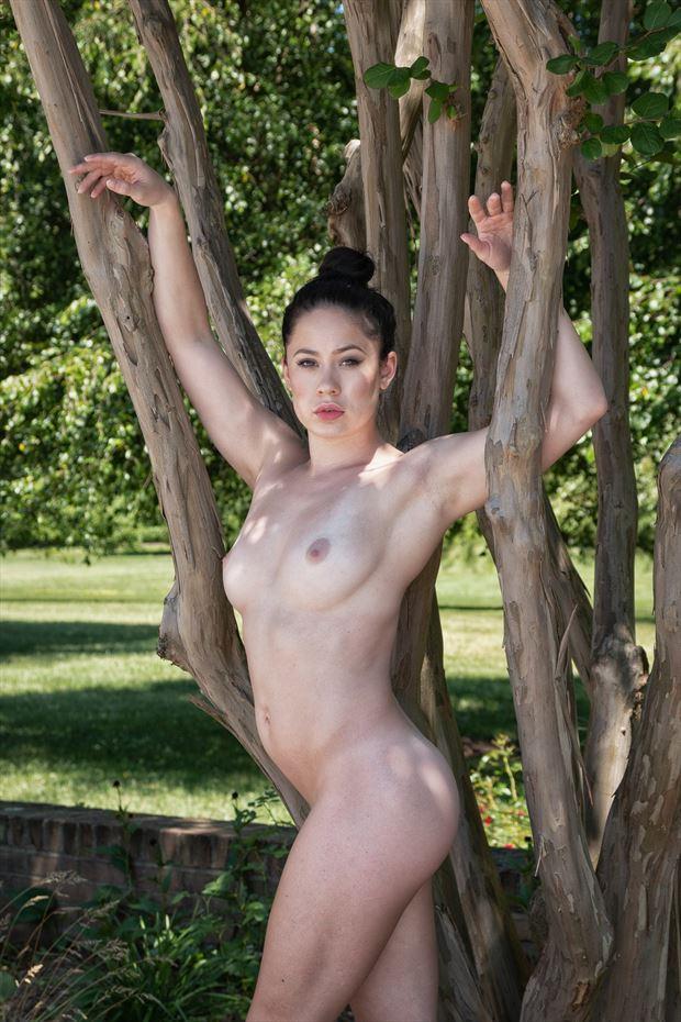 limbs limbs and more limbs artistic nude photo print by photographer rick jolson