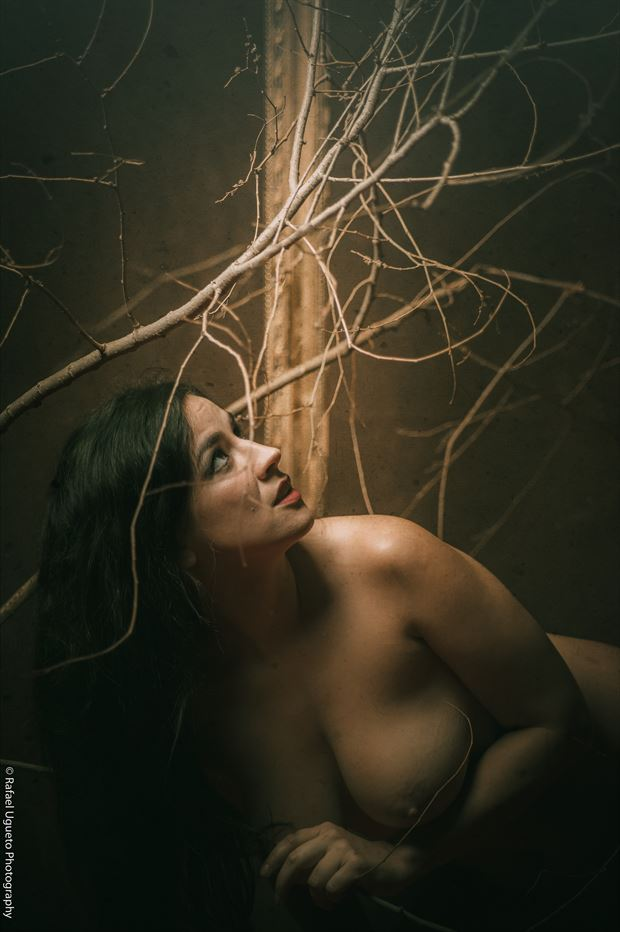 luz 4 artistic nude photo print by photographer rafael ugueto photography