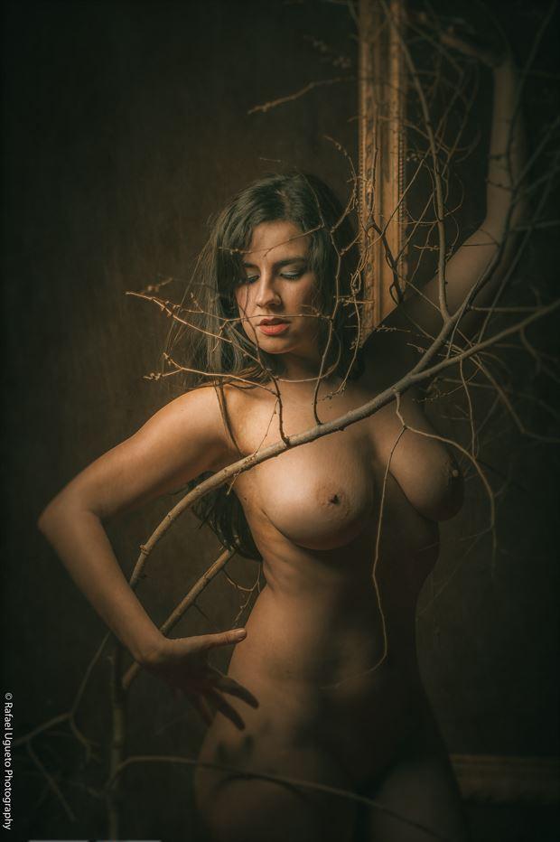 luz artistic nude photo print by photographer rafael ugueto photography
