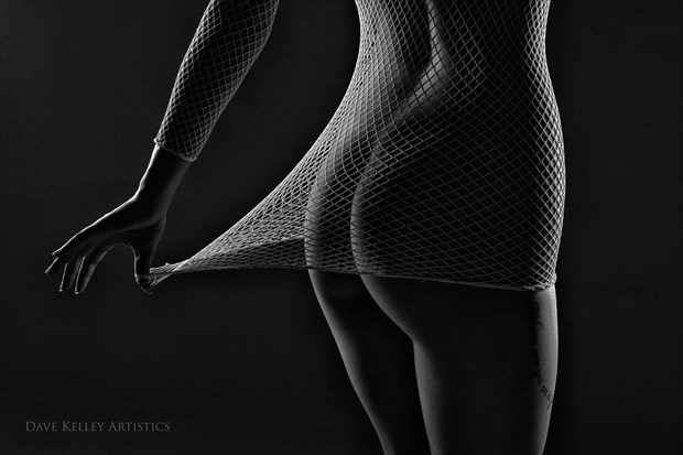net bottom line Artistic Nude Photo print by Photographer Dave Kelley Artistics