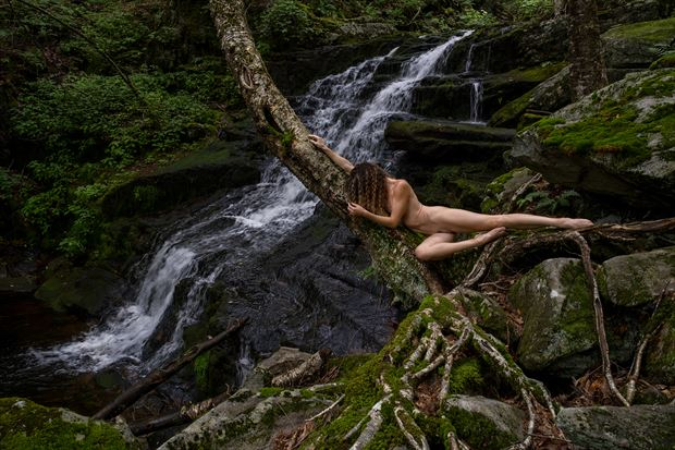 part of nature artistic nude photo print by artist kevin stiles