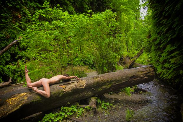 primeval canyon artistic nude photo print by photographer philip turner