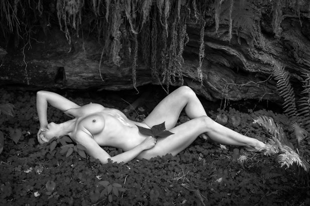 primeval forest nude artistic nude photo print by photographer philip turner