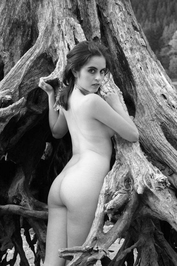 racoon artistic nude photo print by photographer georgevp