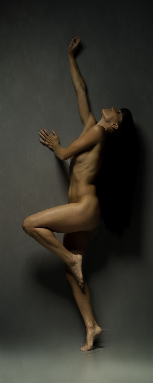 reaching for freedom artistic nude photo print by photographer doc list