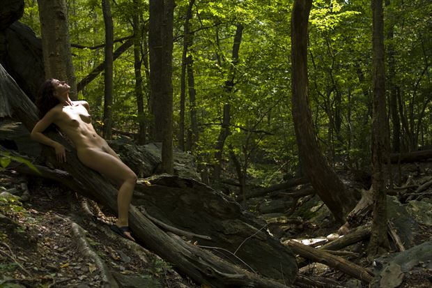 reclining nude in nature artistic nude artwork print by photographer tony avellino