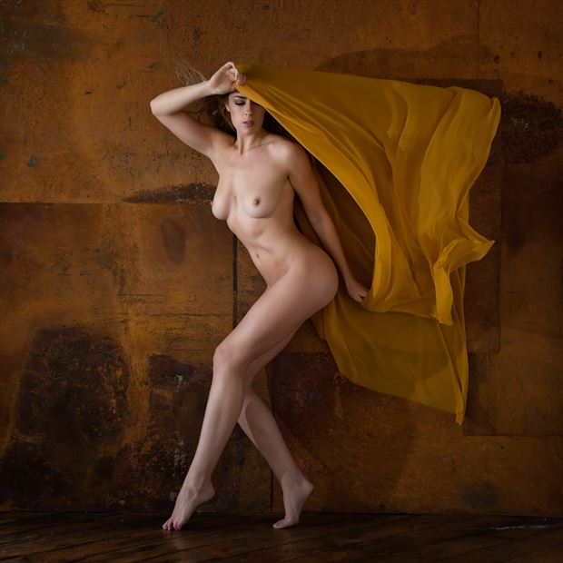 rosa and the yellow scarf artistic nude photo print by photographer randall hobbet