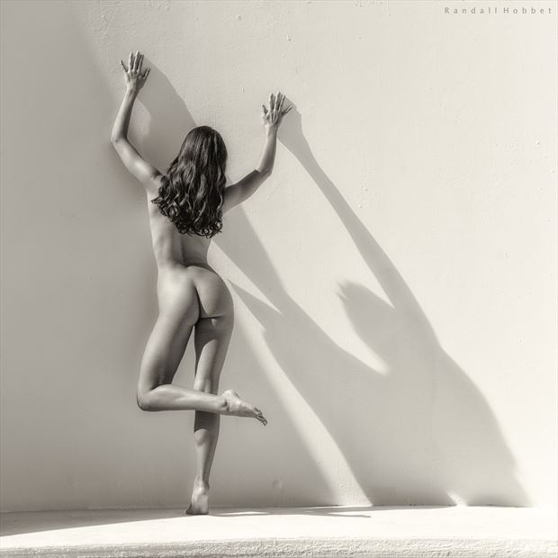 shadow abstract artistic nude photo print by photographer randall hobbet