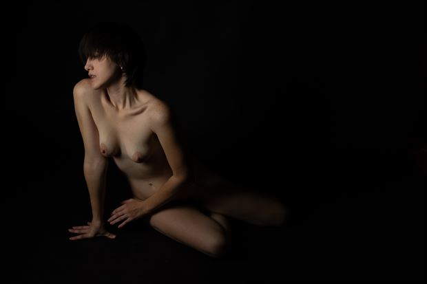 song of s artistic nude photo print by photographer thomas branch