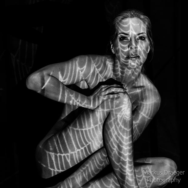 spiderwoman artistic nude photo print by photographer mdraeger