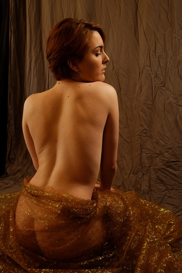 study with sparkly sheer fabric Artistic Nude Photo print by Photographer Fred Scholpp Photo