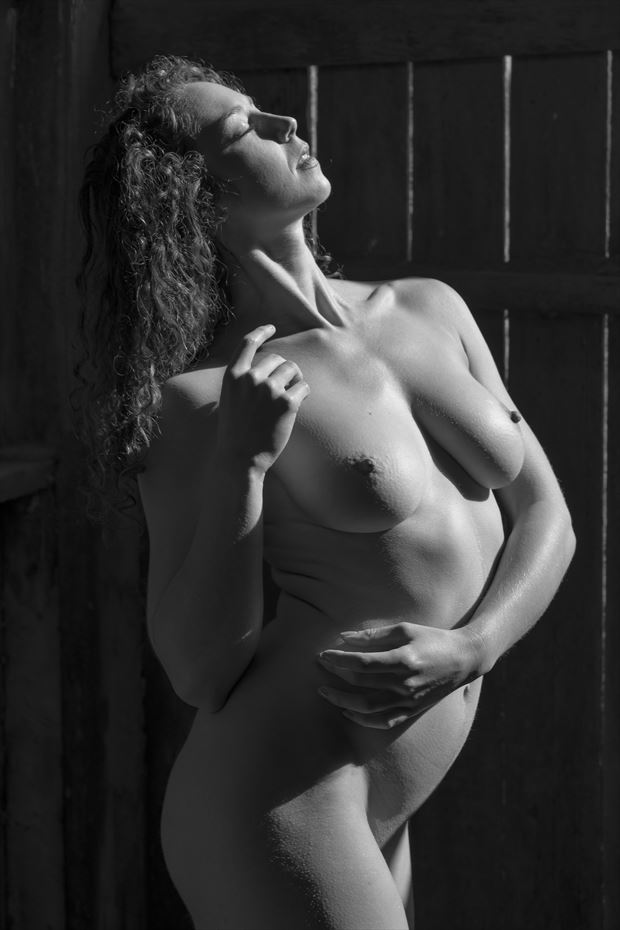 sun kissed artistic nude photo print by photographer philip turner