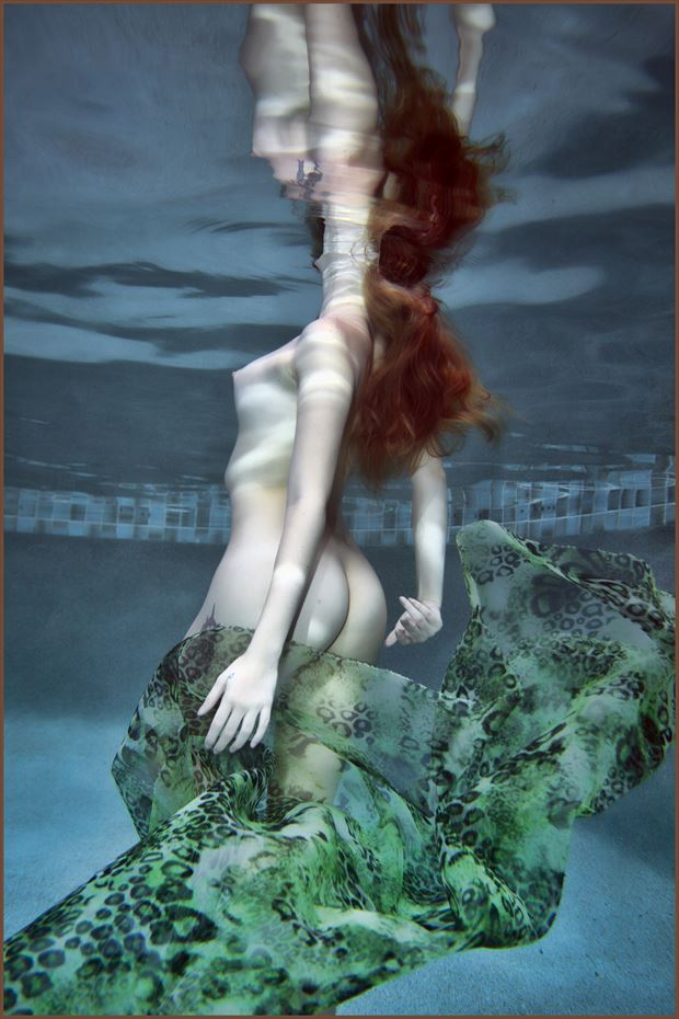 tamara artistic nude photo print by photographer dpaphoto