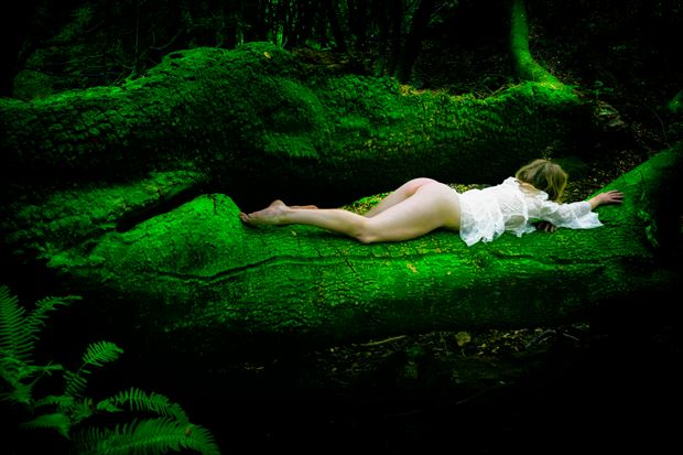 the emerald forest artistic nude photo print by photographer philip turner