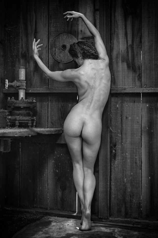 the workshop artistic nude photo print by photographer philip turner