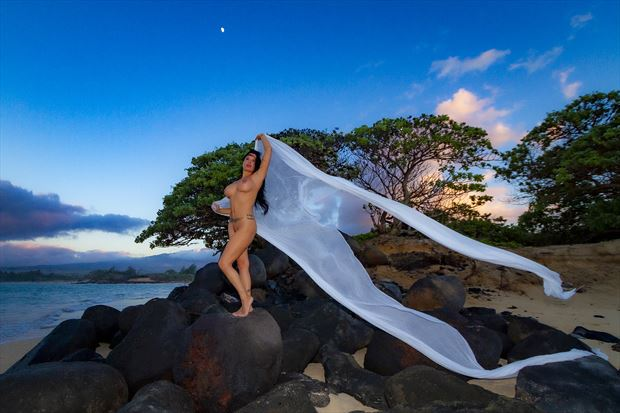 unveiled to luna artistic nude photo print by photographer opp_photog