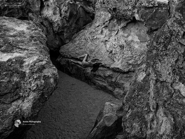 venusdesierra nature photo print by photographer acros photography