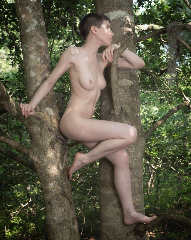 woodland nymph 4 artistic nude photo print by photographer intimate images